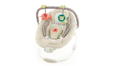 comfort & harmony bouncer